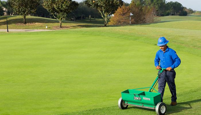 Chăm sóc cỏ sân golf tháng đầu sau khi trồng