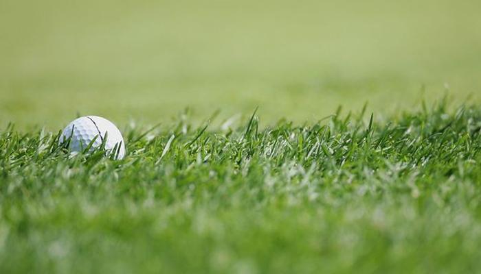 Quy trình trồng và chăm sóc cỏ sân golf đạt chuẩn hiện nay